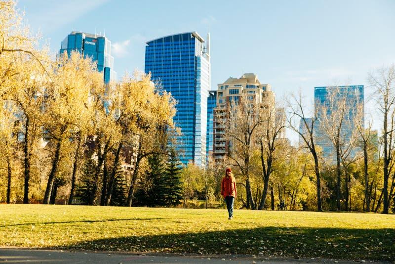现代市中心景观从公园附近拍摄 加拿大卡尔加里 — 2019年10月 库存照片