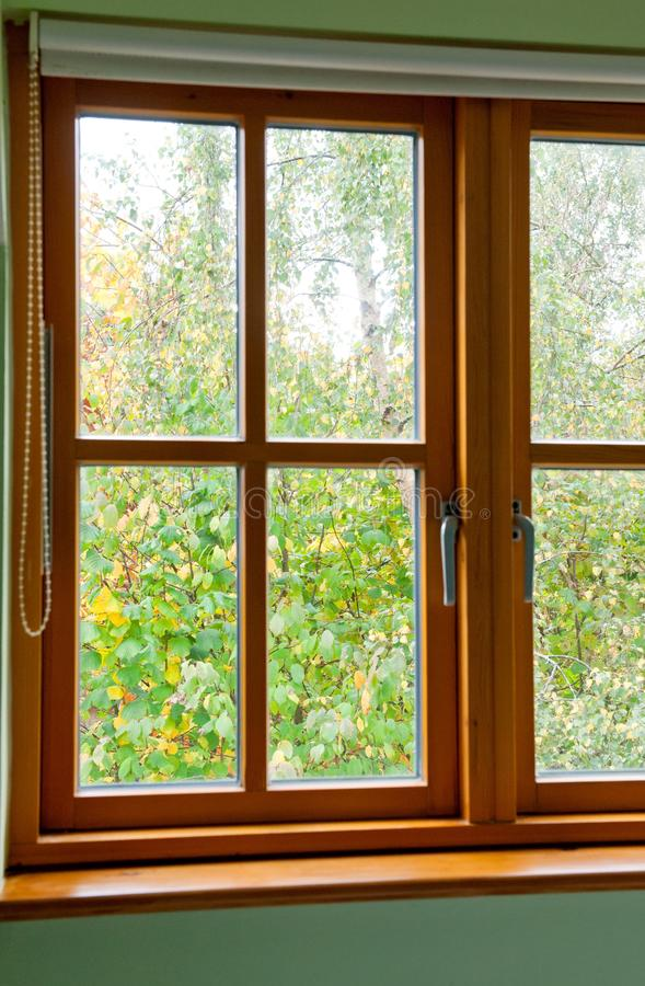 现代木窗口 图库摄影