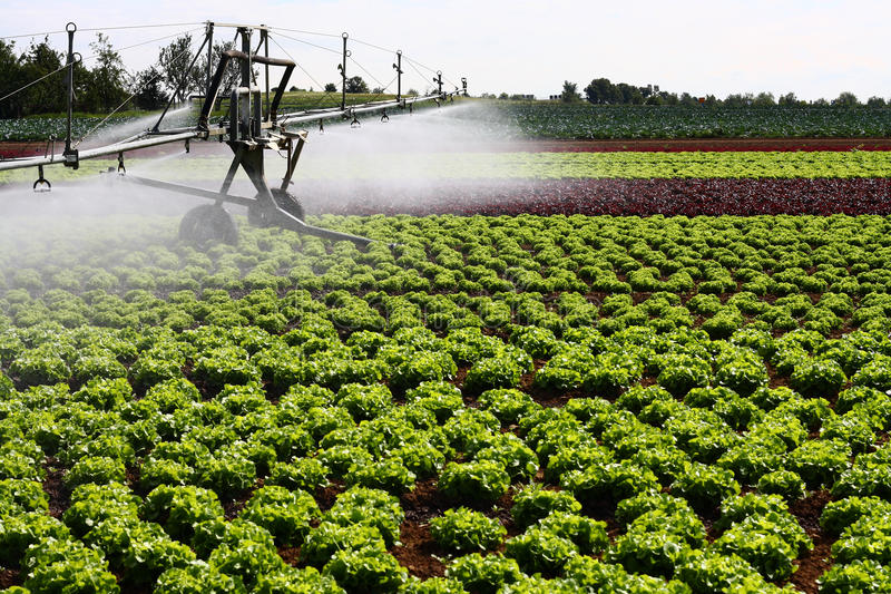 现代灌溉系统 图库摄影