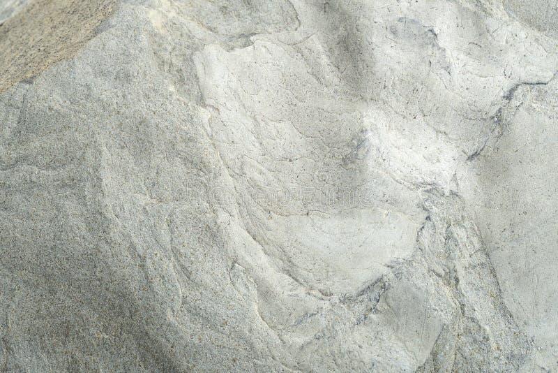 现代白色墙壁 这是水平的水泥具体背景 难看的东西抽象石头 免版税图库摄影