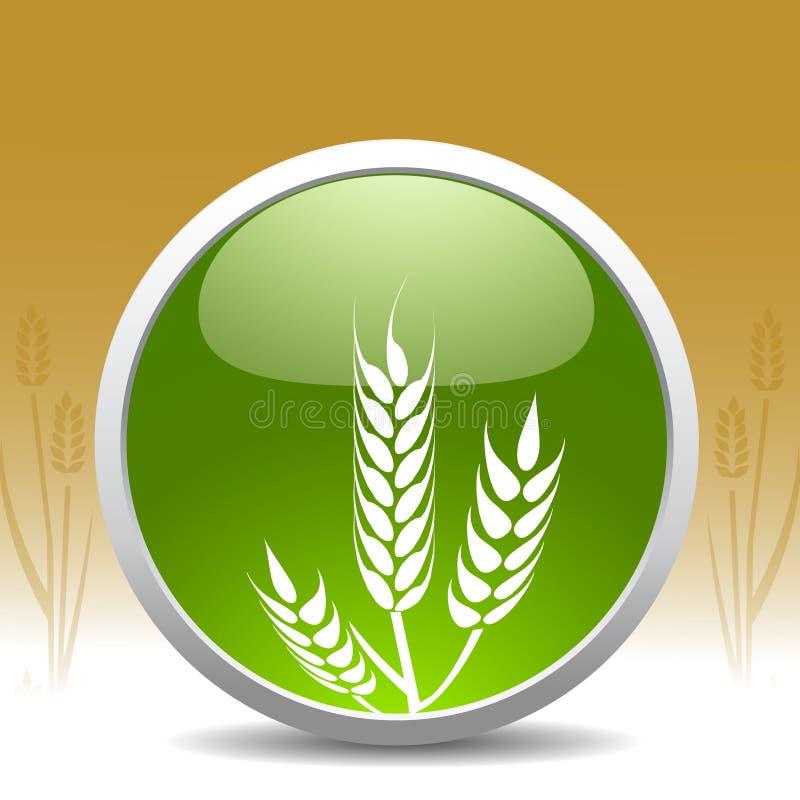 现代符号麦子 向量例证