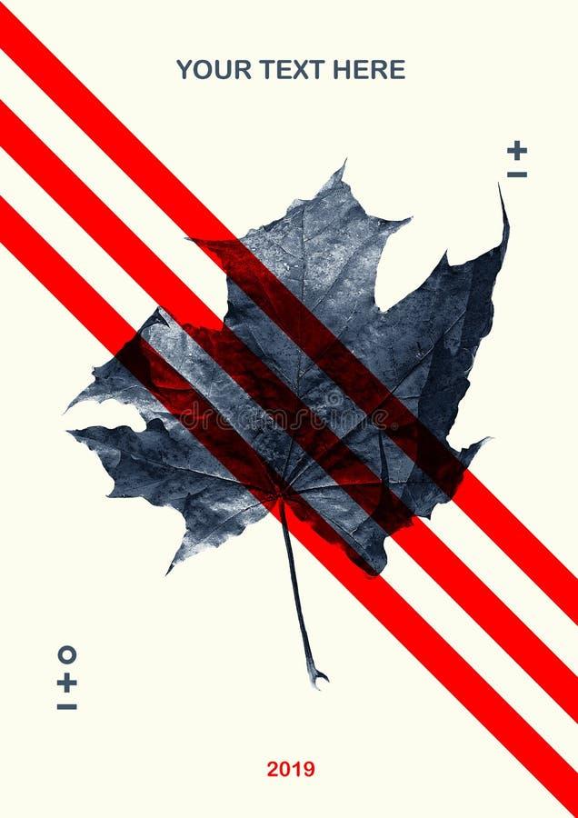 现代美术拼贴画 叶子和形状 免版税图库摄影