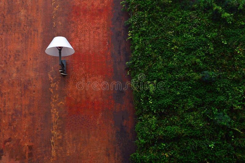 现代街灯和常春藤在墙壁 免版税库存图片