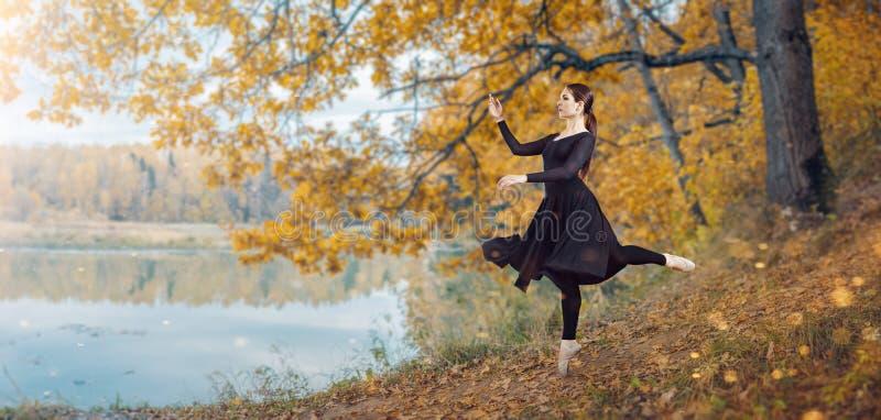 现代跳芭蕾舞者在秋天公园 库存照片