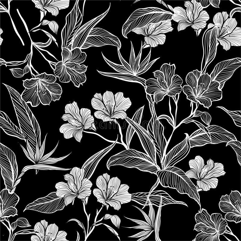 现代黑白无缝的样式线植物的花和植物在庭院里 皇族释放例证