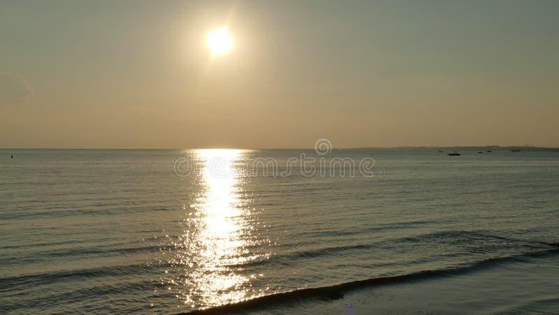 现出轮廓人家庭和宠物在海滩和海沙金黄日落背景 库存照片