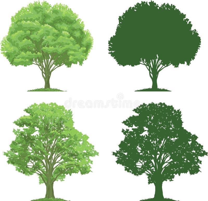 现出轮廓结构树 皇族释放例证