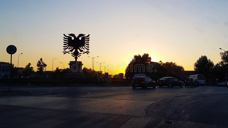 现出轮廓老鹰在日落光中的天空和颜色签字 库存图片