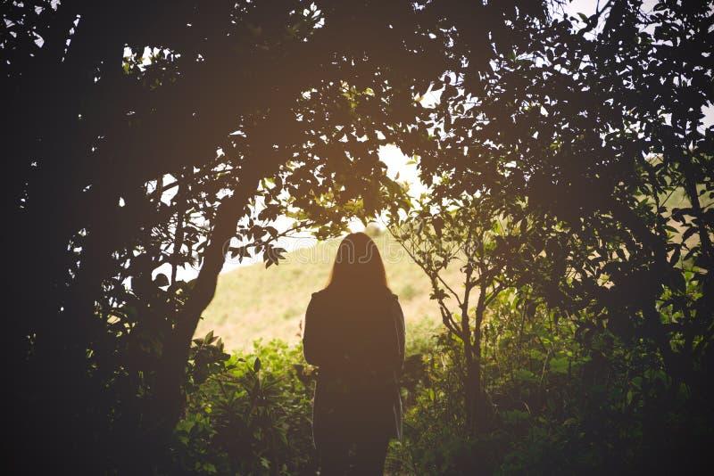 现出轮廓走和迁徙在森林里的妇女游人的图象 免版税库存图片