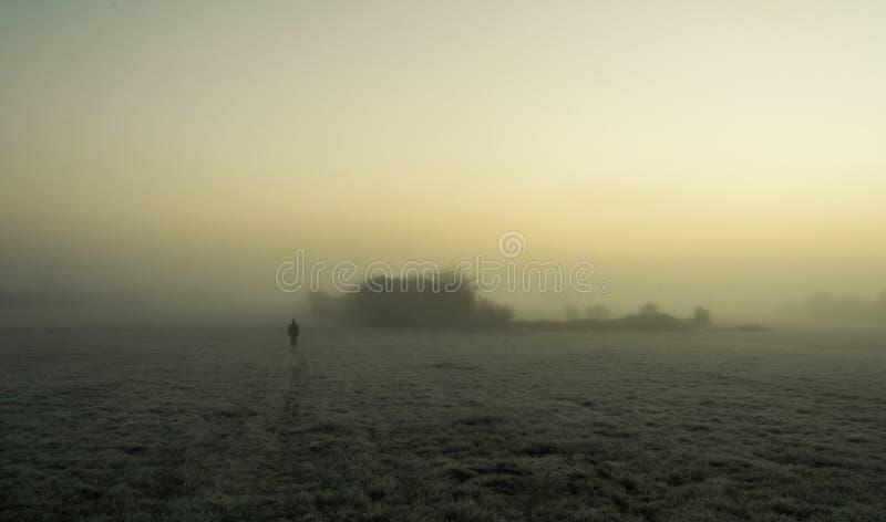 现出轮廓走在一个冷淡的域的雾 免版税库存图片