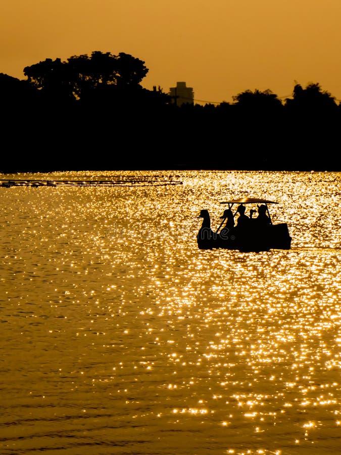 现出轮廓在天鹅脚蹬小船的夫妇在日落 库存图片