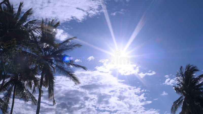 现出轮廓椰子树反对与蓝天和白色云彩与太阳光芒光 免版税库存照片