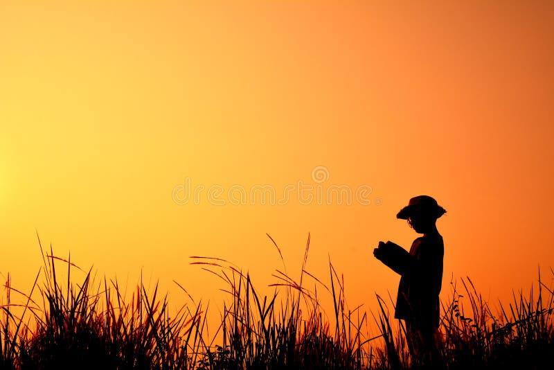 现出轮廓男孩阅读书 免版税库存图片