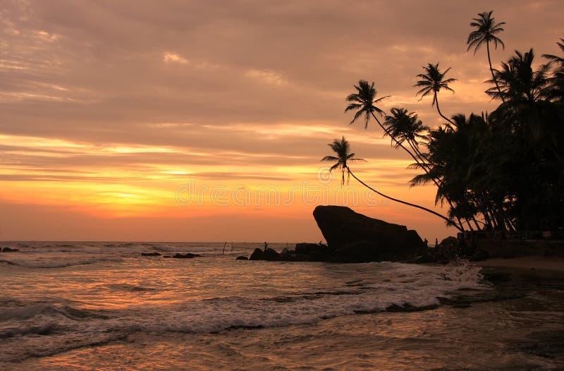 现出轮廓的棕榈树和岩石在日落, Unawatuna,斯里兰卡 图库摄影