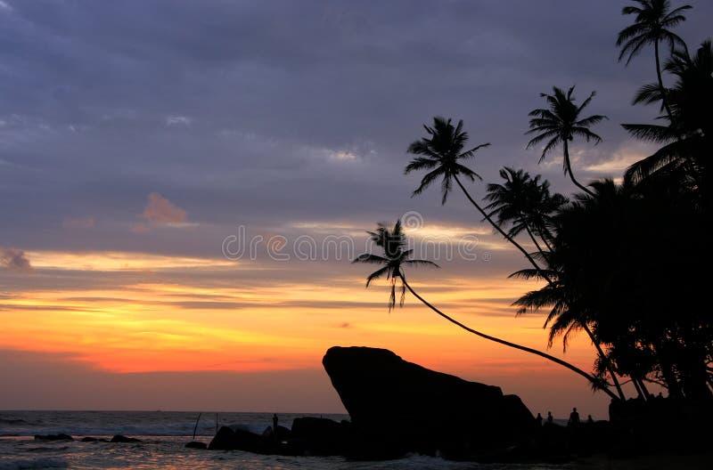现出轮廓的棕榈树和岩石在日落, Unawatuna,斯里兰卡 免版税库存图片