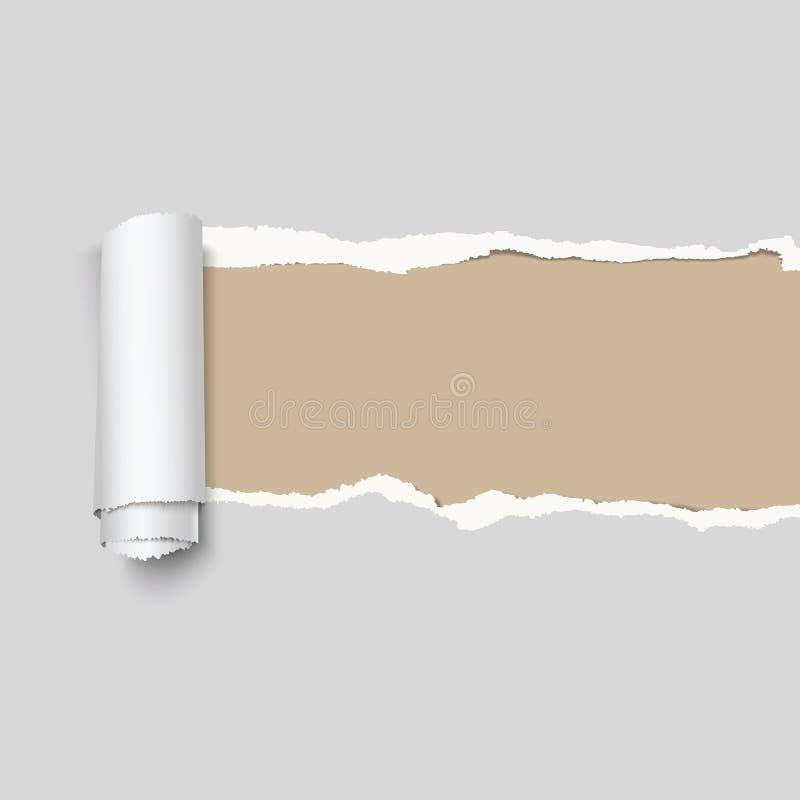 现实传染媒介灰色被撕毁的纸 艺术被画的现有量例证n本质ure 向量例证