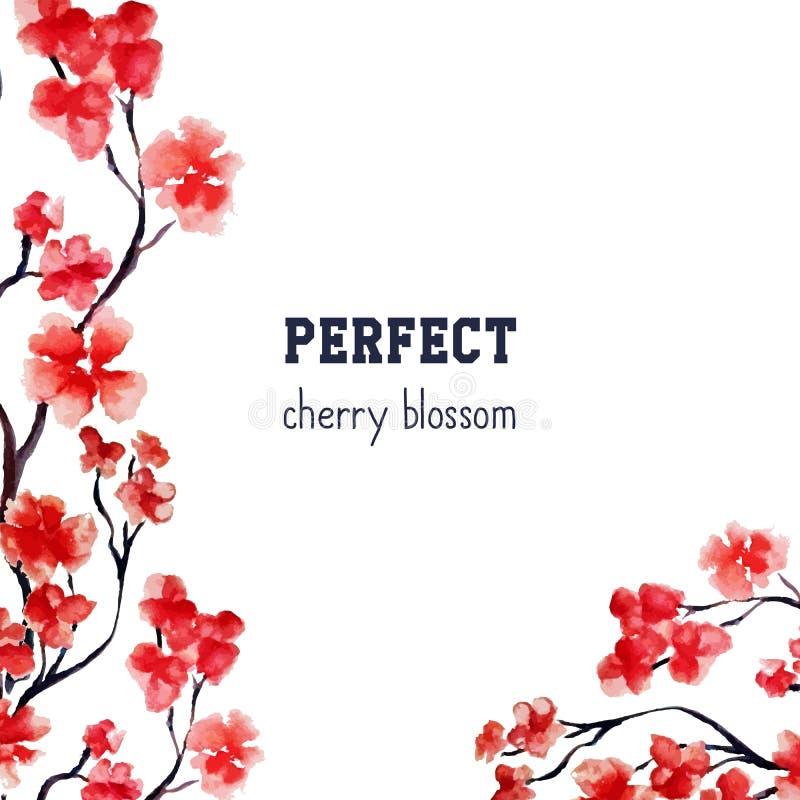 现实佐仓开花-在白色背景隔绝的日本红色樱桃树 传染媒介水彩绘画 剪报 皇族释放例证