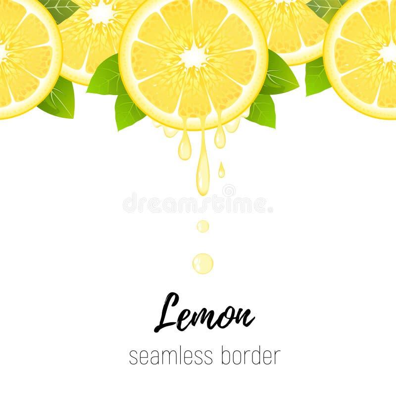 现实在白色隔绝的柠檬切片无缝的边界 新鲜的柑橘用汁液投下传染媒介例证 皇族释放例证