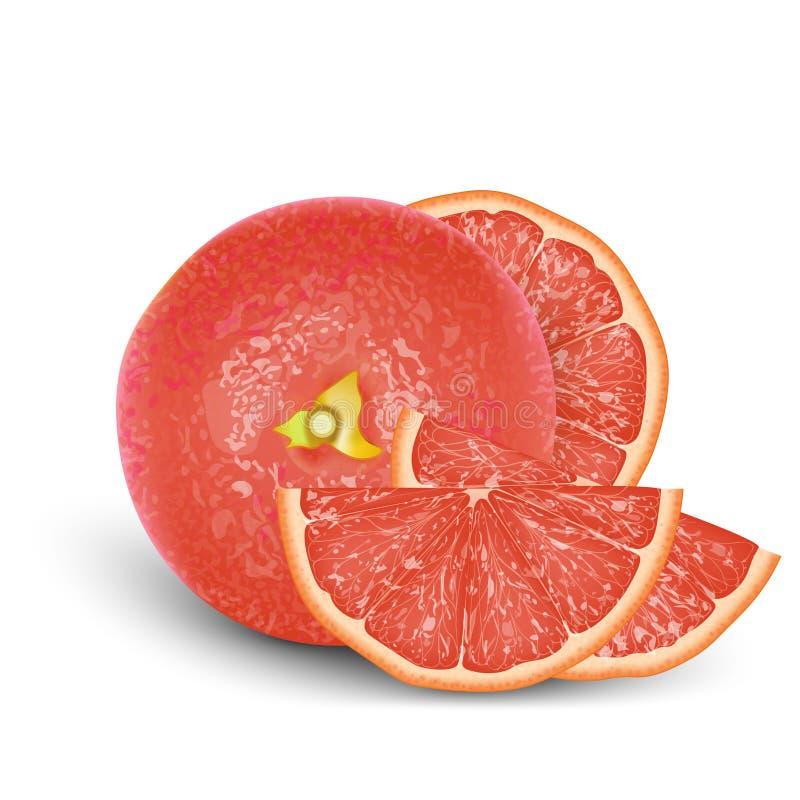 现实桃红色3d葡萄柚 被隔绝的详细的3d例证 库存例证