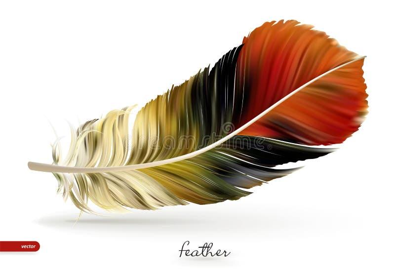 现实羽毛-传染媒介例证 背景查出的白色 向量例证