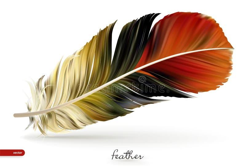 现实羽毛-例证 在空白背景 向量例证