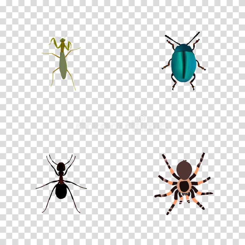 现实臭虫、蚂蚁、塔兰图拉毒蛛和其他传染媒介元素 套臭虫现实标志并且包括Pismire,蓝色 库存例证