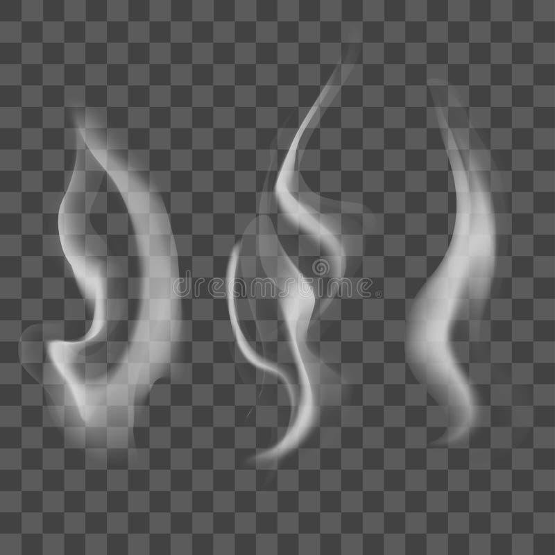 现实蒸汽或烟纹理集合 向量 向量例证