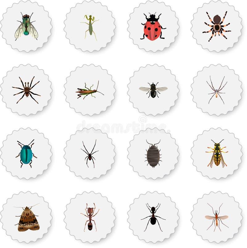 现实蚂蚁、蚊、蜂和其他传染媒介元素 套昆虫现实标志并且包括蚂蚱 向量例证