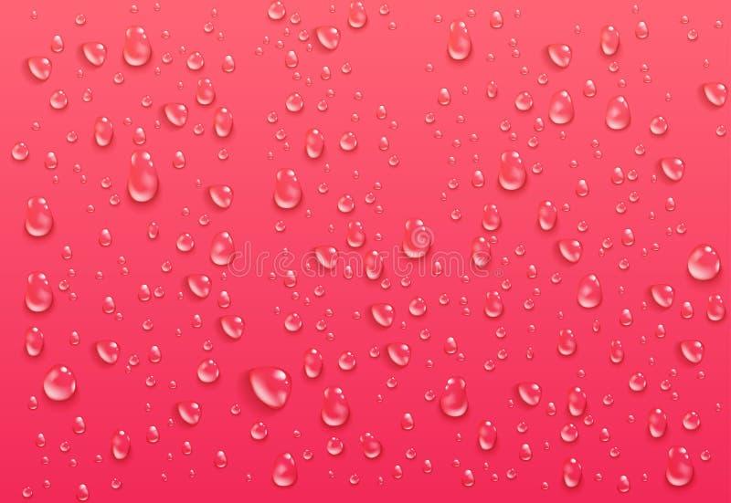 现实透明水下落 在明亮的桃红色背景的纯净的浓缩的小滴 湿表面和清楚的液体 向量例证