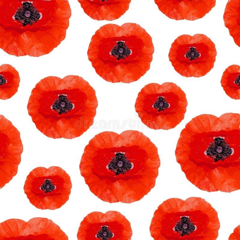 现实鸦片花的无缝的样式 在白色背景隔绝的红色鸦片 库存例证