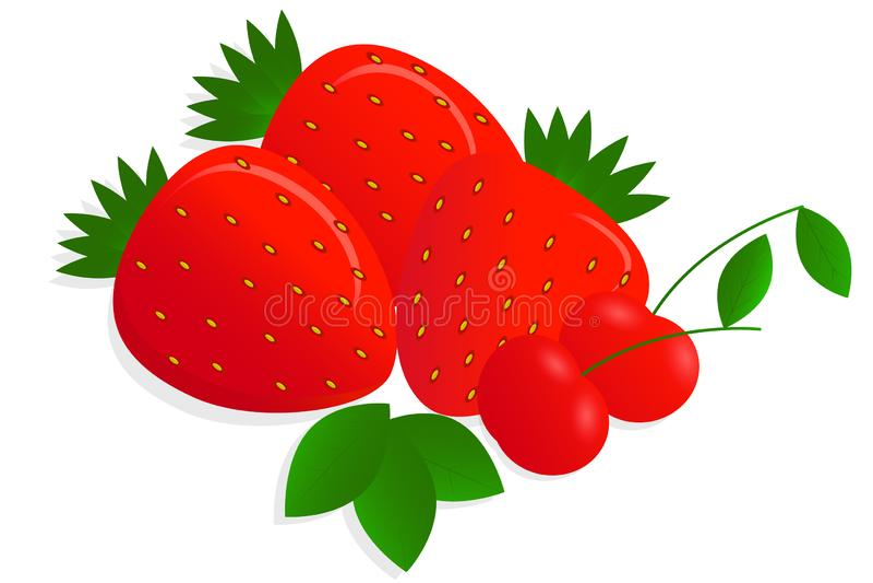 现实,明亮,水多的在白色背景的莓果和阴影传染媒介图画与聚焦的 向量例证