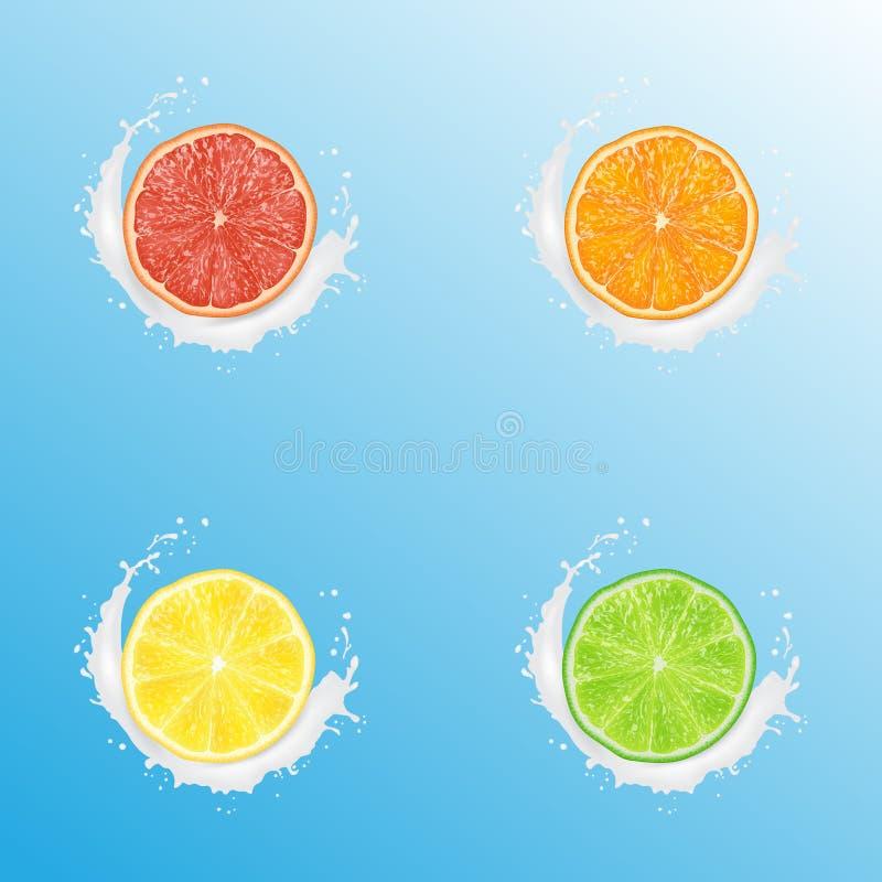 现实3d传染媒介例证套切的桔子、葡萄柚、柠檬和石灰 牛奶在蓝色背景的酸奶飞溅 皇族释放例证