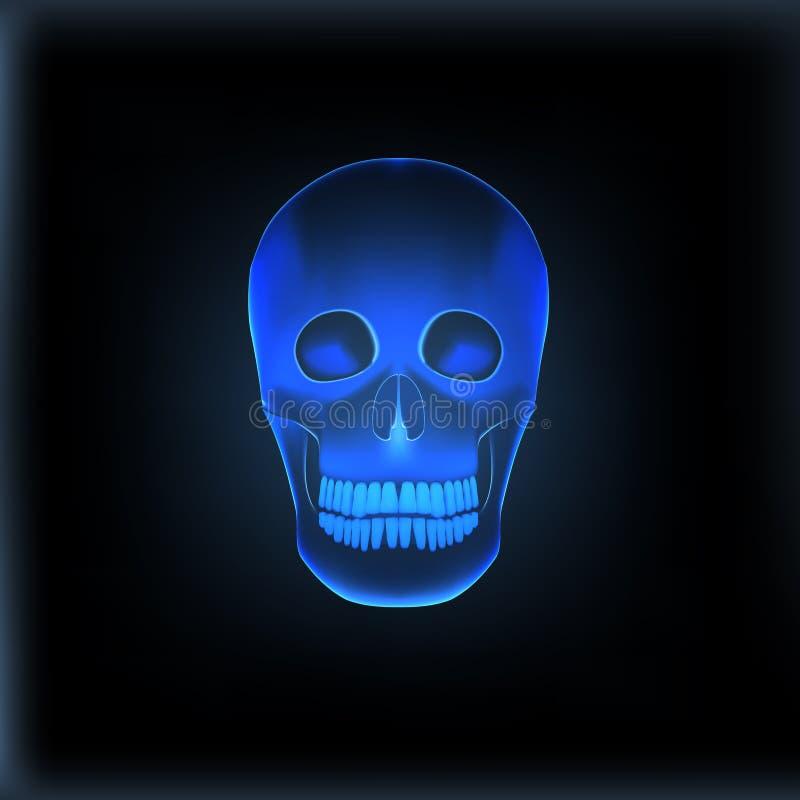 现实X-射线头骨医疗图象 向量例证