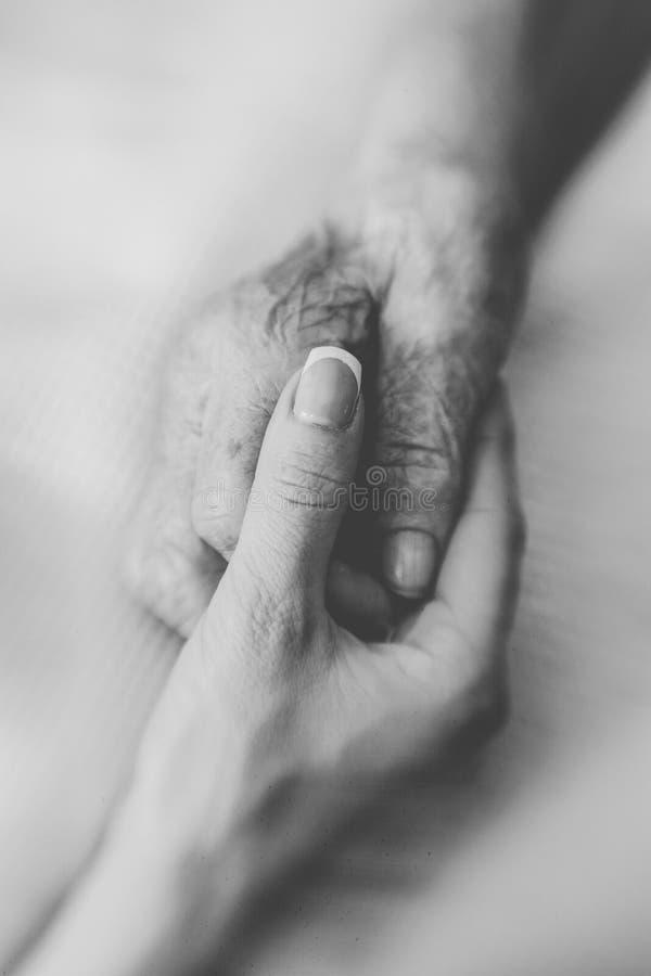 现有量帮助 年轻女人的手小心地支持一个老妇人的起皱纹的手 免版税库存图片