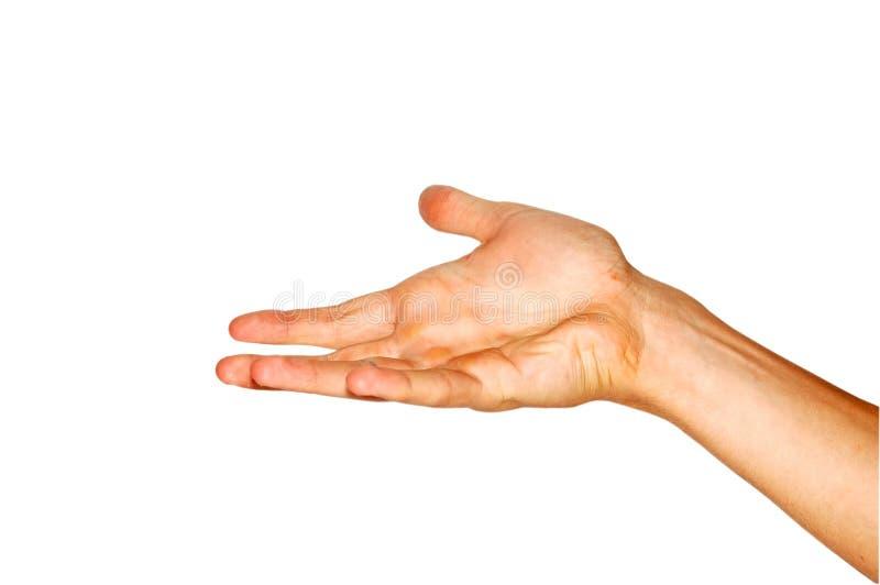 Download 现有量 库存照片. 图片 包括有 掌上型计算机, 部分, brusher, 前臂, 手指, 少年, 索引, 腕子 - 3655084