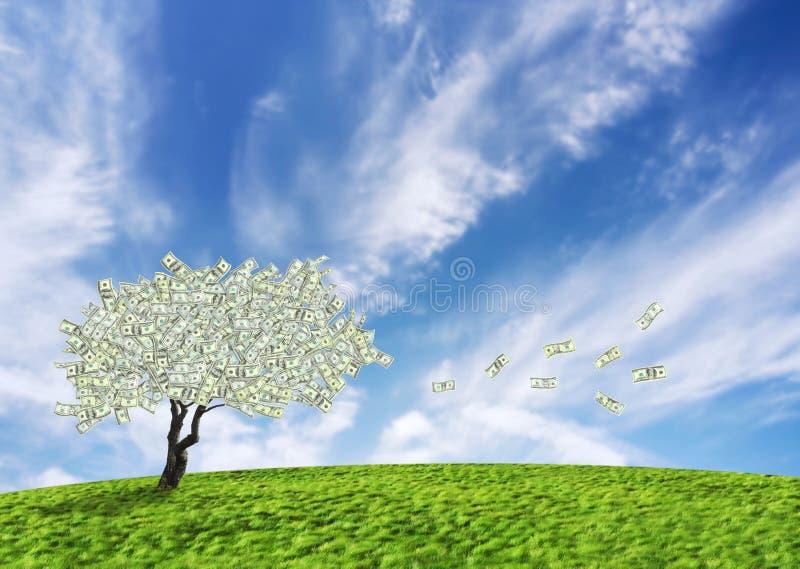 现金美元结构树 库存例证