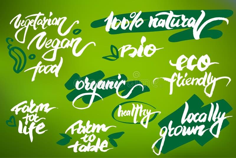 现代刷子字法 关于有机产品的手写的词 库存图片
