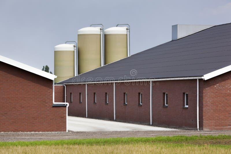 现代大厦的农场 免版税库存照片