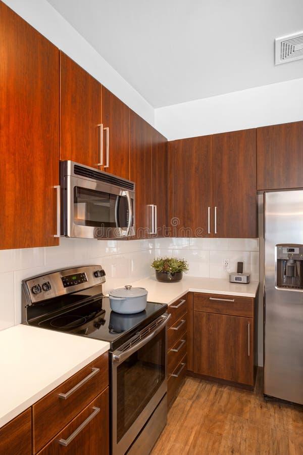 现代被改造的厨房 库存照片