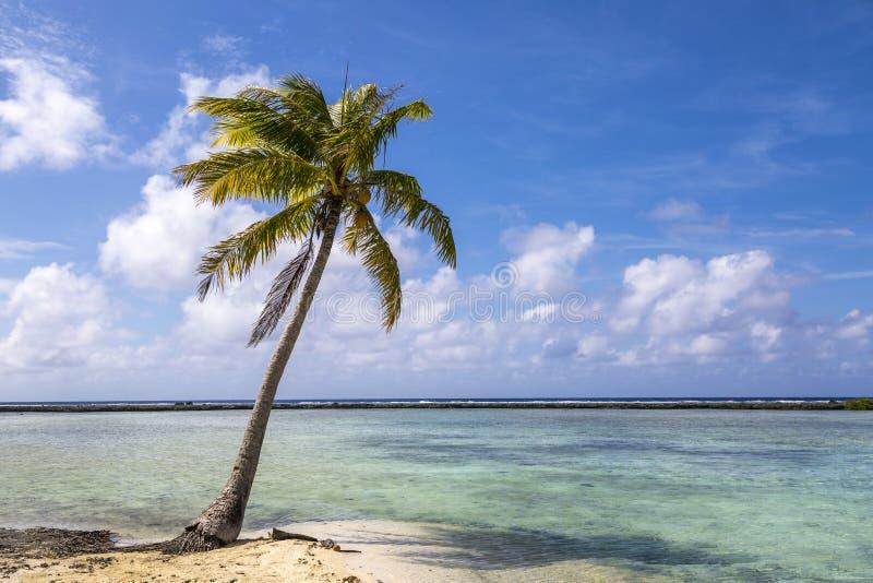 玻利尼西亚海滩平静 图库摄影
