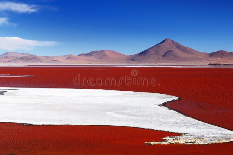 玻利维亚 库存图片