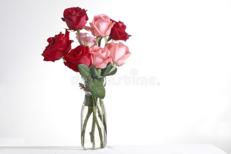 玻璃和rose1 免版税库存图片