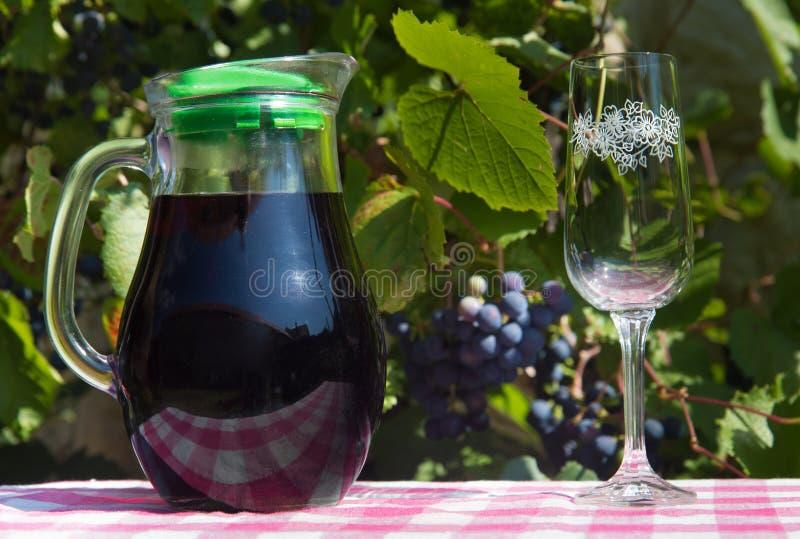 玻璃水罐用红葡萄酒和酒杯 免版税库存图片