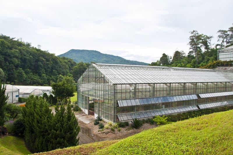 玻璃温室。 免版税库存照片