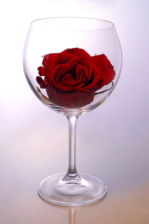 玻璃玫瑰酒红色 免版税库存图片