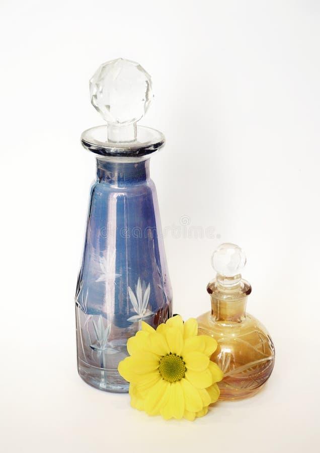 玻璃瓶上色了花黄色菊花白色背景 免版税库存照片