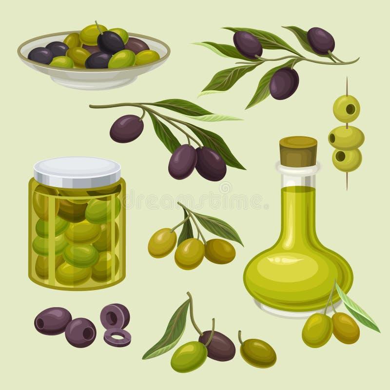 玻璃瓶油和罐装橄榄,分支用绿色和黑橄榄,有机,自然和健康食物,传染媒介 库存例证