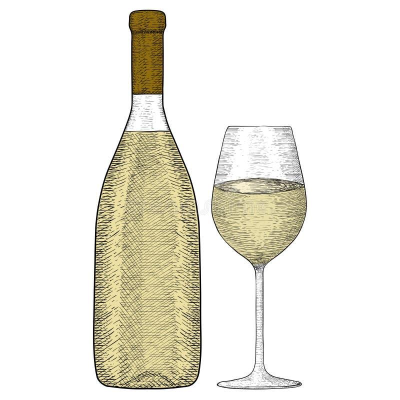 玻璃瓶白葡萄酒 手拉的草图 皇族释放例证
