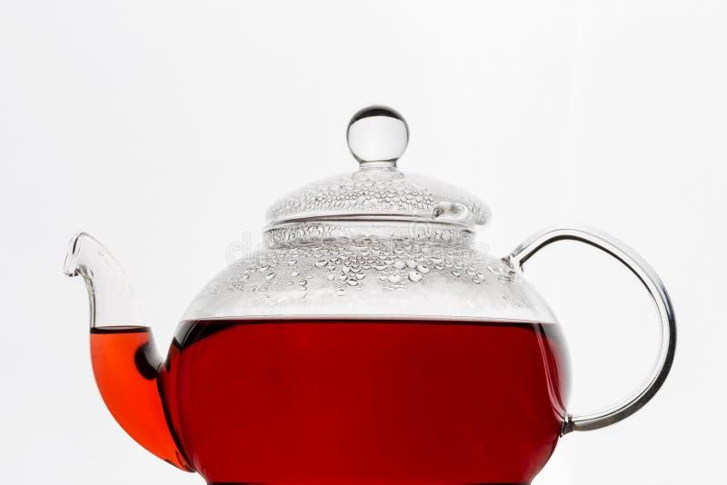 玻璃茶壶用木槿在白色背景的karkade茶 免版税图库摄影
