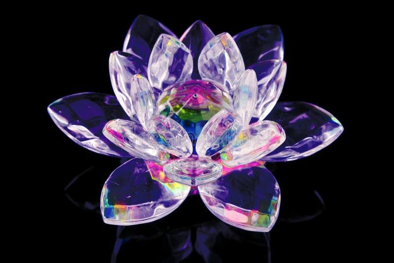 玻璃莲花 库存图片